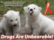 RRW_LawnSigns_Unbearable